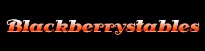 Kumpulan Situs Judi Poker Indonesia
